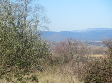 Mountains seen from La Prairie