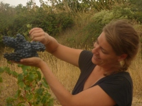 Roxane with a huge bunch of Morastel