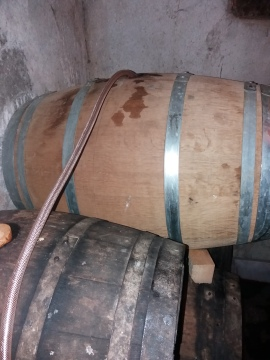 The new barrel of the Grenaches being emptied