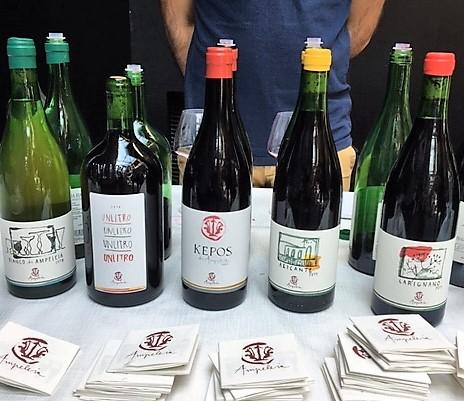 Amp wines